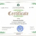 """Certyfikat ukończenia kursu """"Podstawy mistrzostwa trenerskiego"""""""